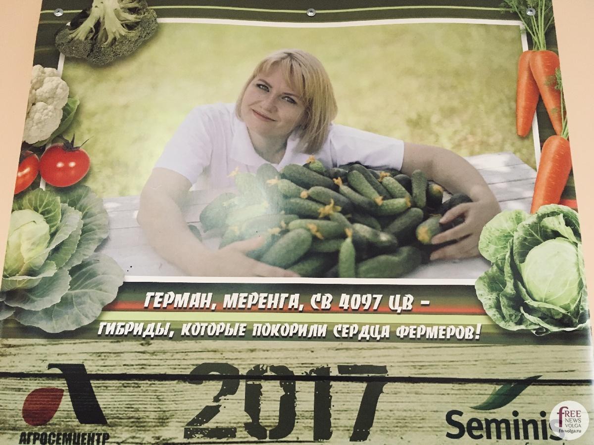 Изображение - Кто выращивает овощи 1540401625_1628580000