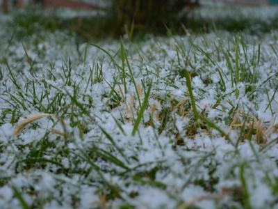 В выходные в Саратовской области ожидаются снег и дождь