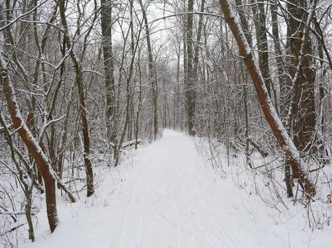 Саратовцев ожидают снежные и морозные выходные
