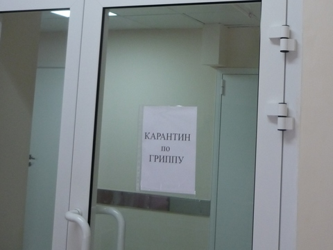 Эпидемия гриппа вКазахстане: вшколах введен карантин
