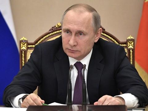 Деятельность лидера Российской Федерации одобряют больше 81 процента жителей — Опрос