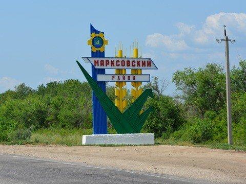 Задве недели вСаратовской области выявлено восемь очагов АЧС
