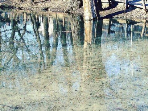 ВКалининском районе вводопроводной воде содержание нитратов превышено в5 раз