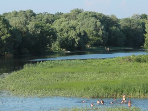 ВСаратове 17-летний парень потонул вМонаховом пруду