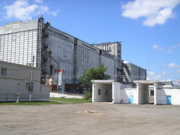 Екатериновский элеватор ао производители конвейеров и